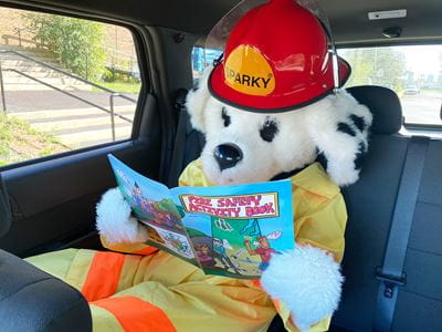 Sparky Reading On The Way To School